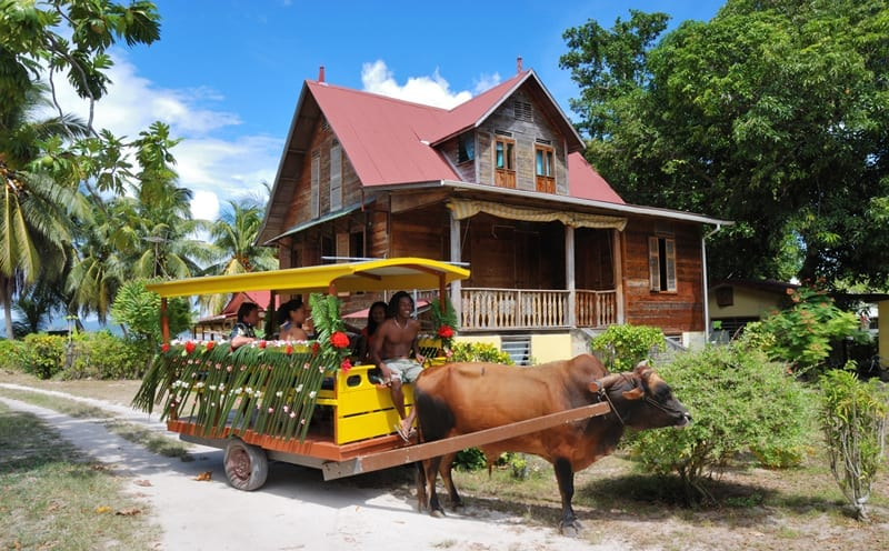 IMG4-Ox-Cart--Old-House