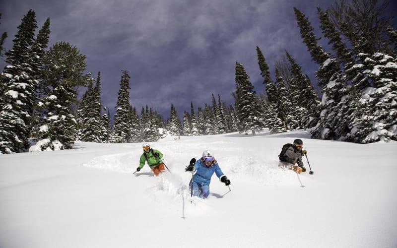 ski-powder-20